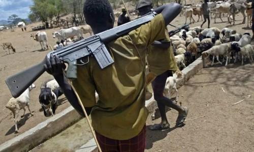 armed herdsmen pic
