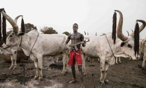 armed-herdsman