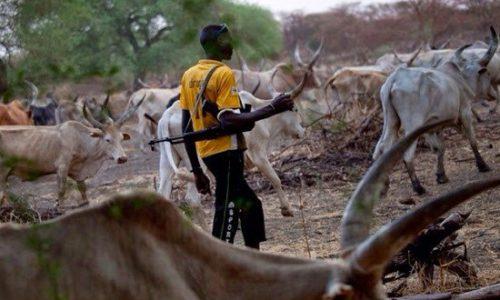 Herdsmen-invade-Delta-community-kill-one.jpg