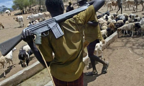 Fulani-herdsmen-Here-are-the-grim-statistics.jpg